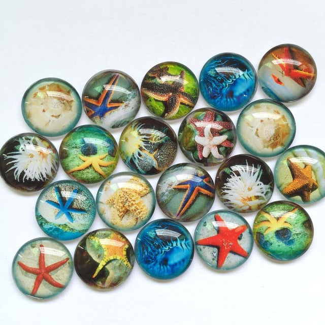 10mm 12mm Starfish Glass Cabochon Mixed Round  Cameo Cabochon Setting Supplies for Jewelry Handmade Pattern