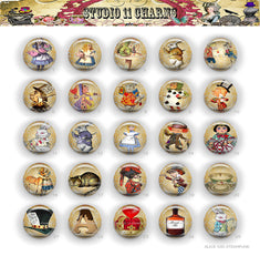 25pcs 25mm 1 inch Bottle Cap Resin Cameo Cabochon. Alice in Wonderland 42d