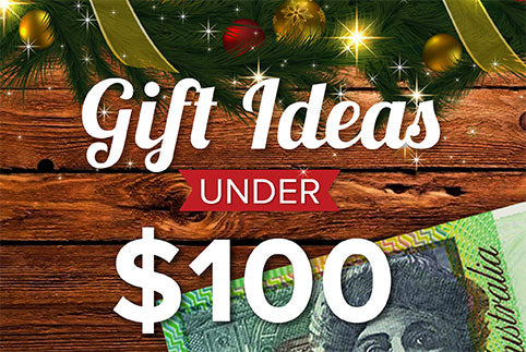Christmas Gifts Under $100 Brand House Direct