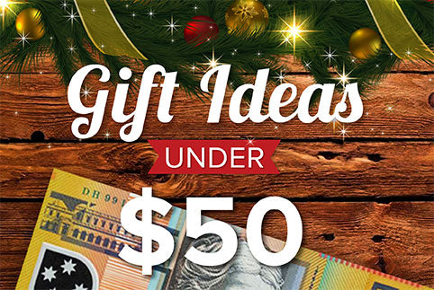 Christmas Gifts Under $50 Brand House Direct