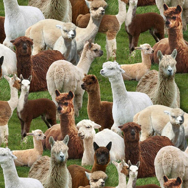 Alpacas Fabric - Green - ineedfabric.com