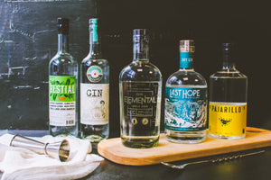 Variedad de Gin Chileno: Gin Bestial, Gin Los Andes #1, Gin Elemental, Gin Last Hope Dry y Gin Pajarillo.