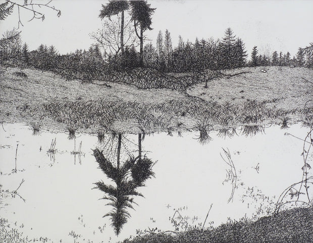 The Pond - March 1978 by Art Hansen - Davidson Galleries