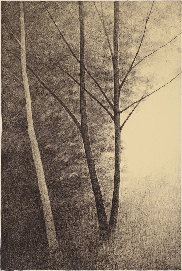 The Three Trees by Shigeki Tomura - Davidson Galleries