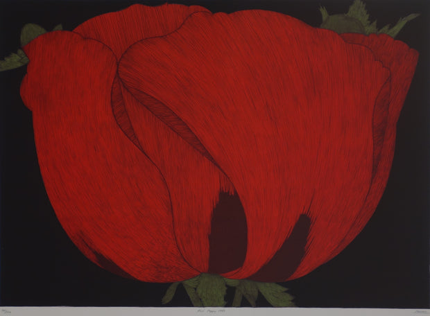 Red Poppy 1993 by Art Hansen - Davidson Galleries