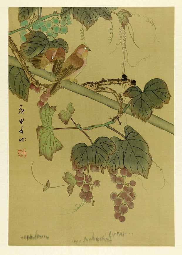 Grapes by Artist Unidentified - Davidson Galleries