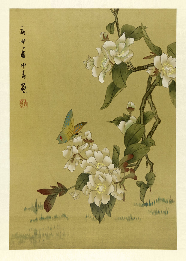 Butterfly and White Flowers by Artist Unidentified - Davidson Galleries