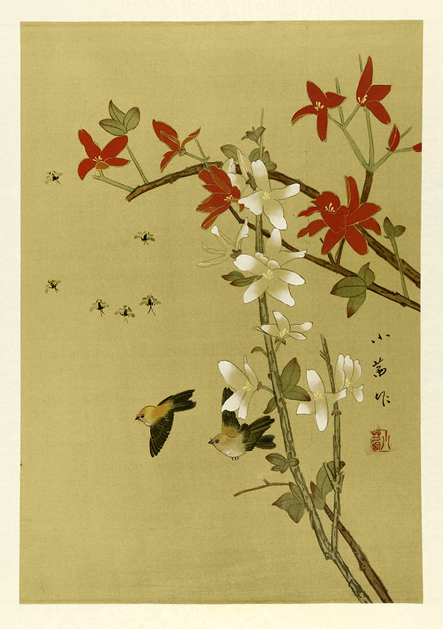Two Birds and Six Bugs, Red and White Blossom by Artist Unidentified - Davidson Galleries