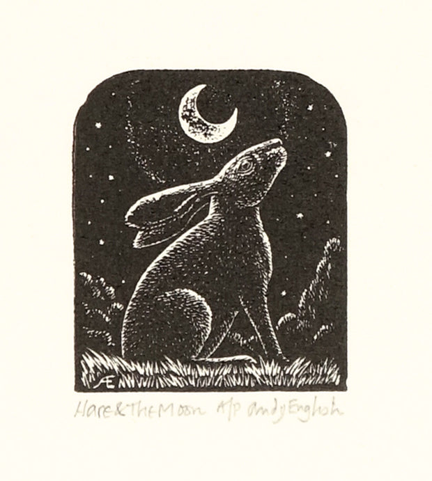 Hare & the Moon