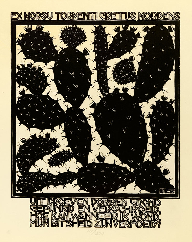Cactus by M. C. Escher - Davidson Galleries