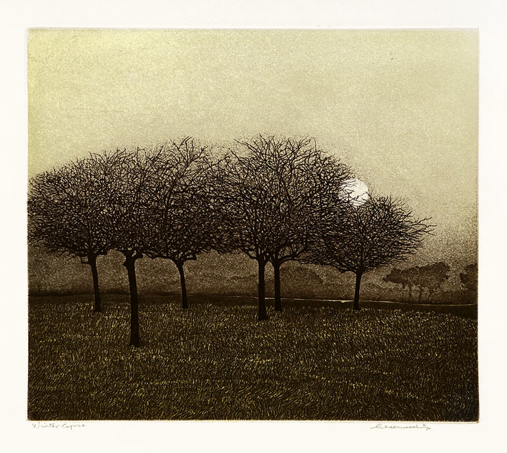 Winter Copse by Phil Greenwood - Davidson Galleries