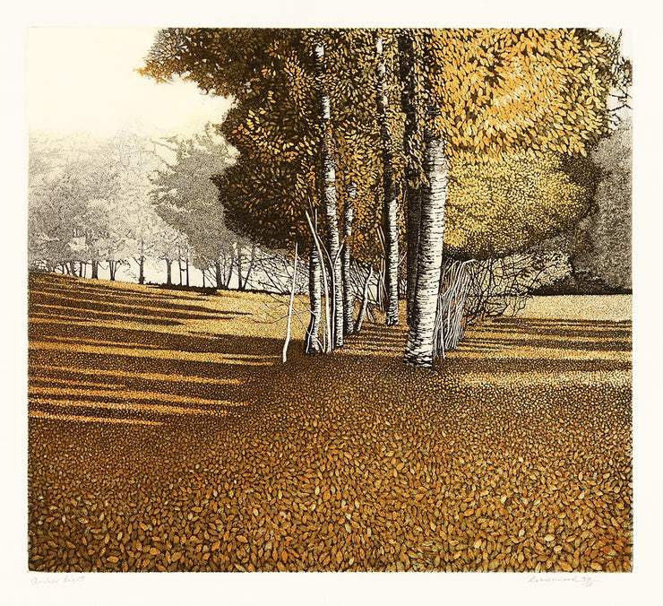 Amber Light by Phil Greenwood - Davidson Galleries