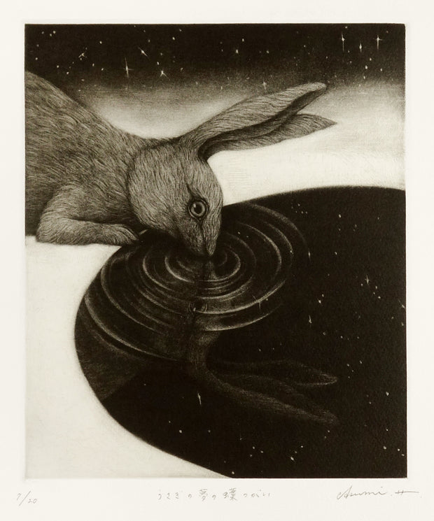 Reflecting a Rabbit's Dream by Asumi Hayashi - Davidson Galleries