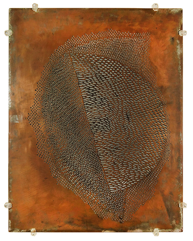 Copper Plate by Arthur Luiz Piza - Davidson Galleries