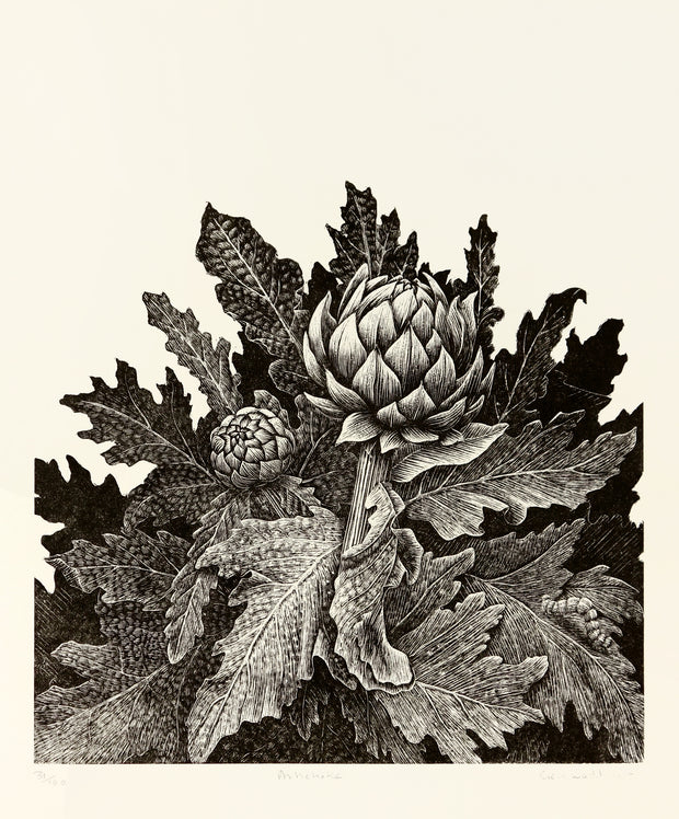 Artichoke by Geri Waddington - Davidson Galleries