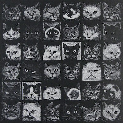 Another Cat Show by Hilary Paynter - Davidson Galleries