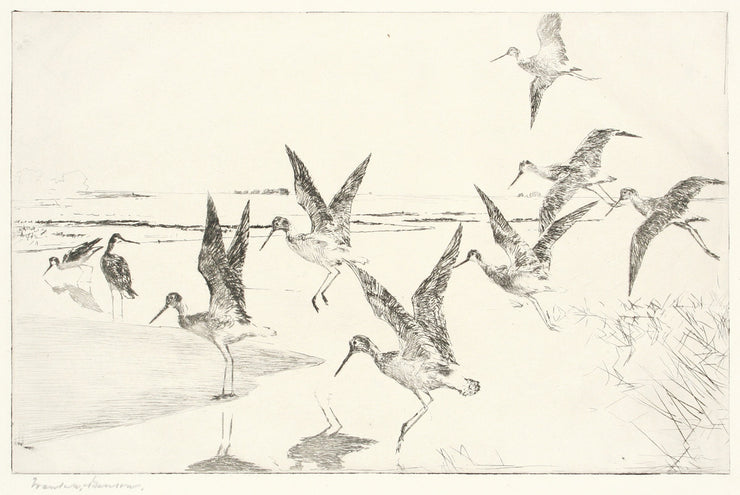 Greater Yellowlegs by Frank Weston Benson - Davidson Galleries