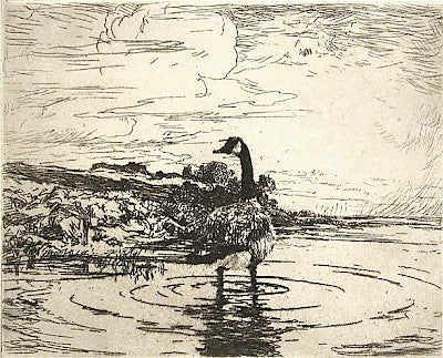 Canada Goose by Frank Weston Benson - Davidson Galleries