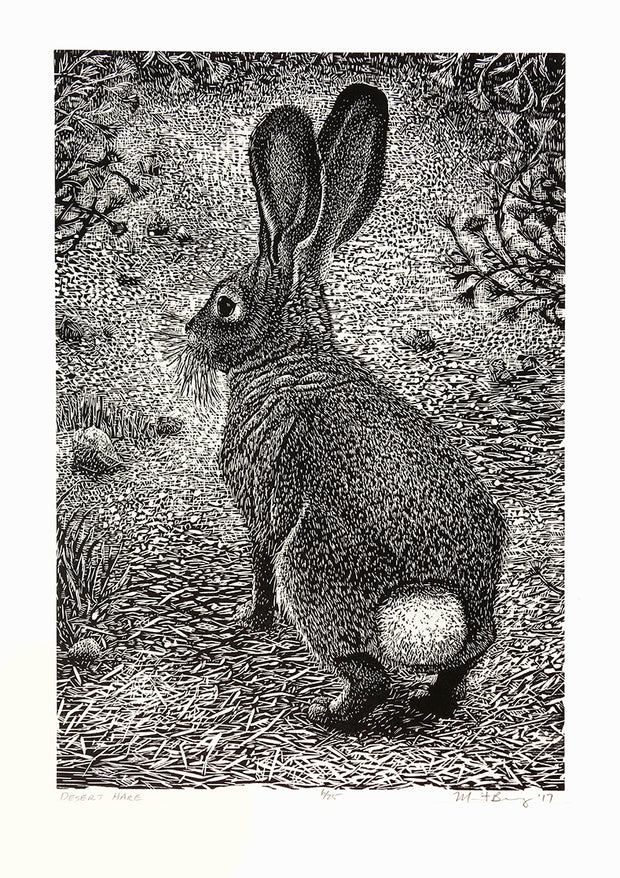 Desert Hare by Marit Berg - Davidson Galleries