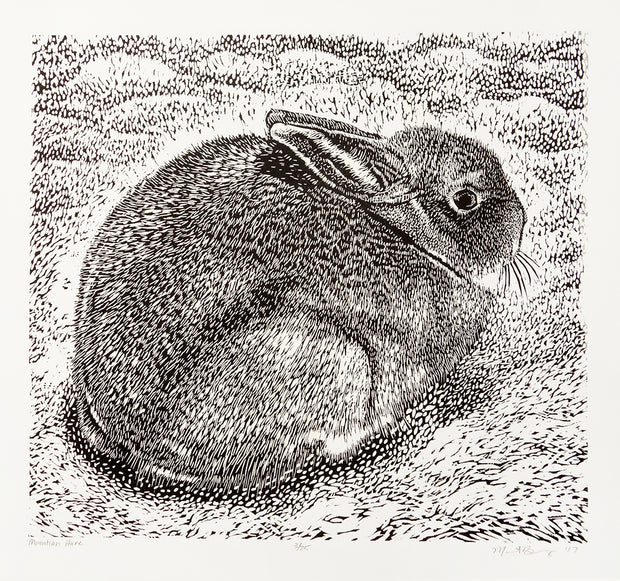 Mountain Hare by Marit Berg - Davidson Galleries