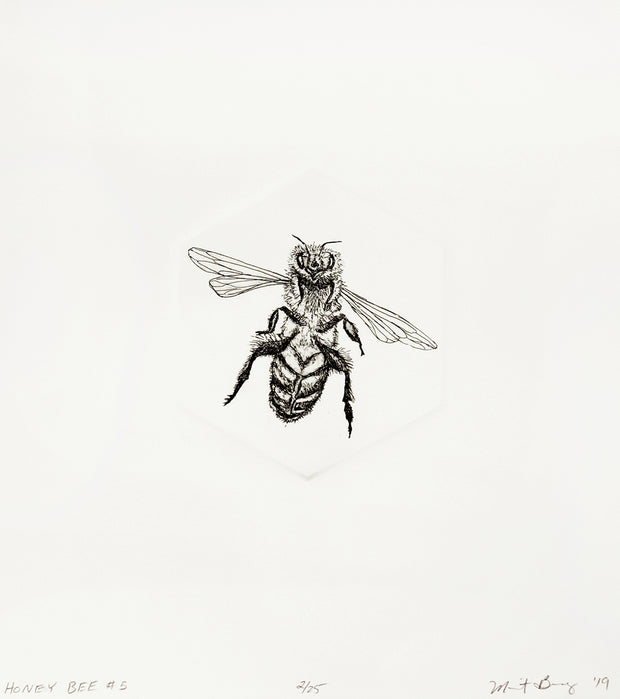 Honey Bee #5 by Marit Berg - Davidson Galleries