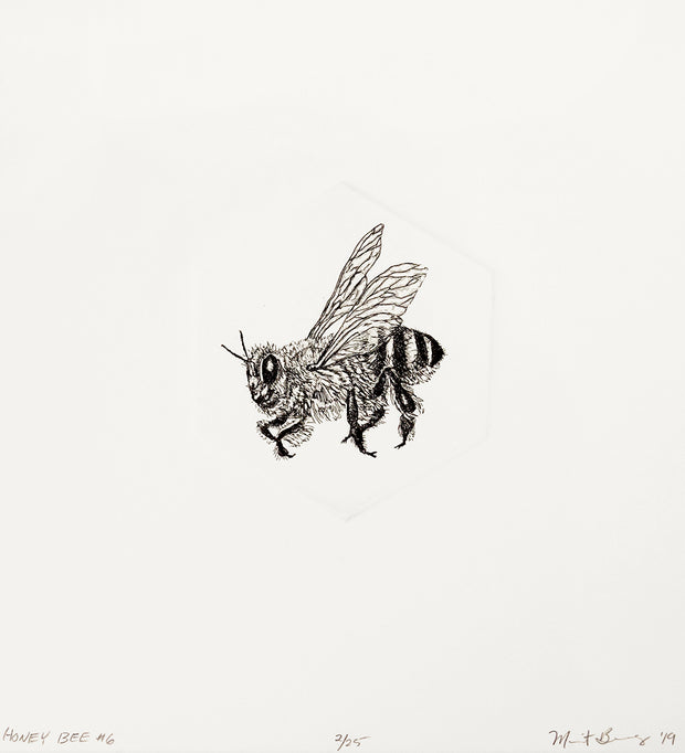 Honey Bee #6 by Marit Berg - Davidson Galleries
