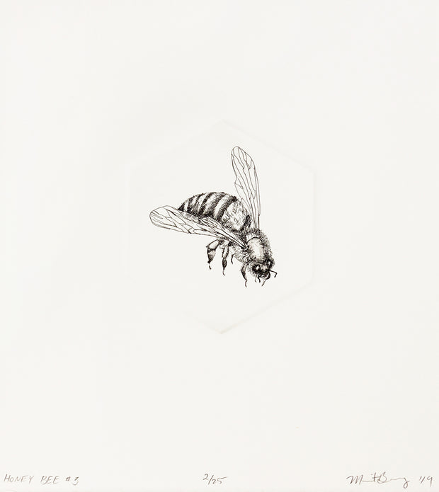 Honey Bee #3 by Marit Berg - Davidson Galleries