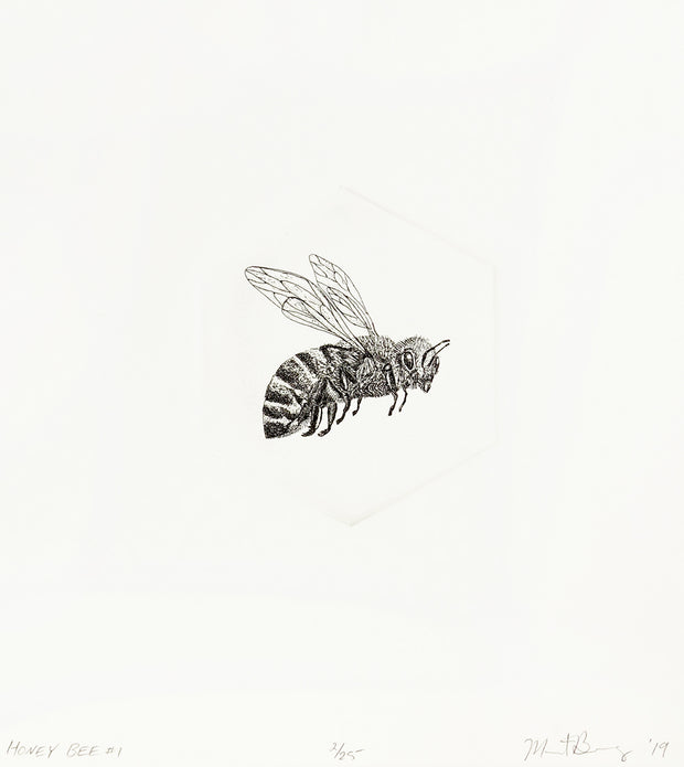 Honey Bee #1 by Marit Berg - Davidson Galleries