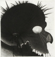 Lens Suite (Portfolio of 9 etchings) by Frank Boyden - Davidson Galleries