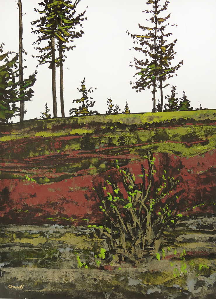 Hillside by Robert Connell - Davidson Galleries