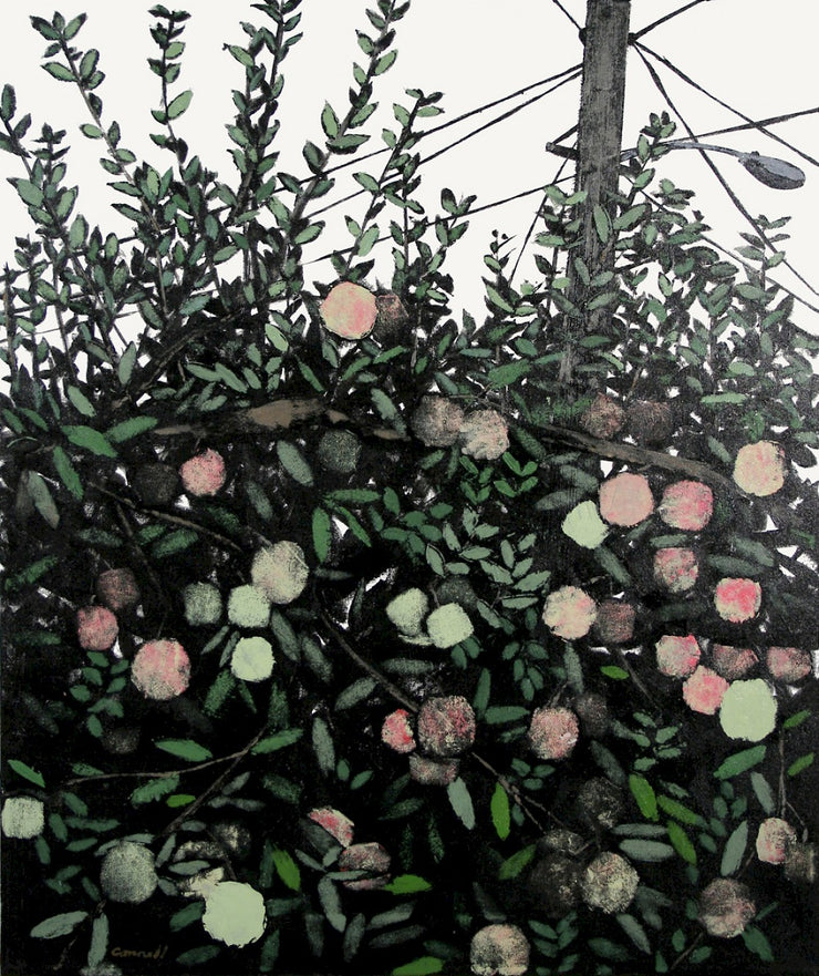 Backyard Apple Tree by Robert Connell - Davidson Galleries
