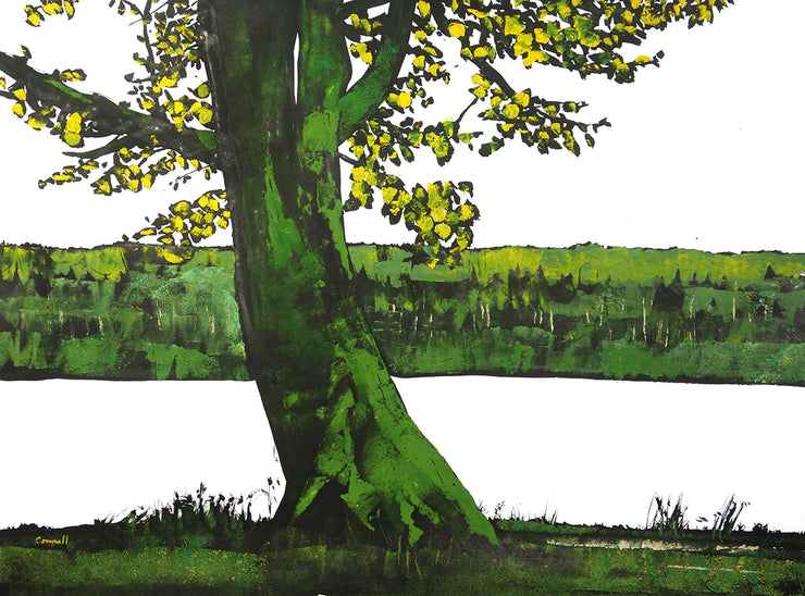 Green Tree by Robert Connell - Davidson Galleries