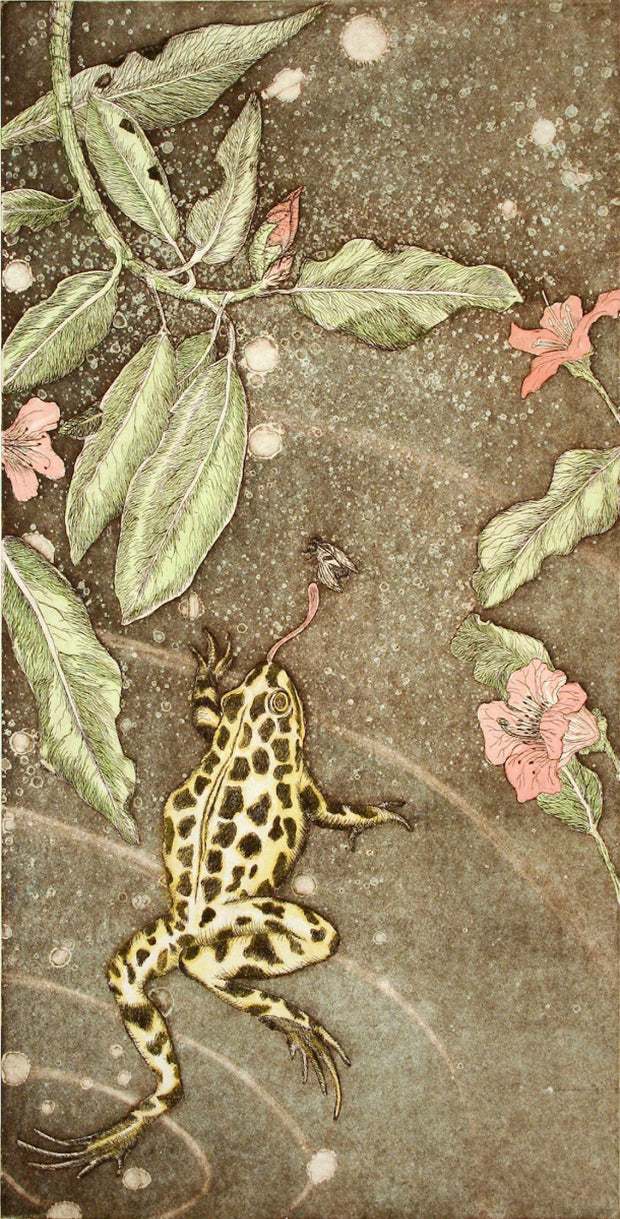 Cascade Spotted Frog with Wild Rhododendron by Tallmadge Doyle - Davidson Galleries