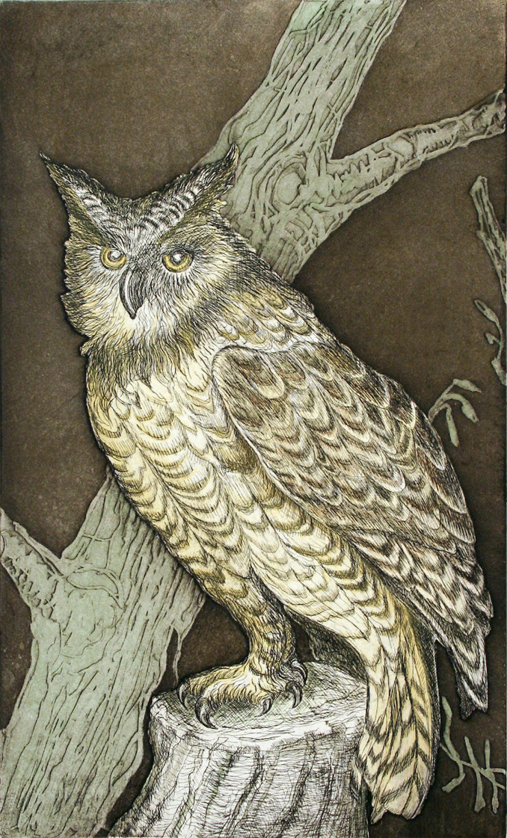 Great Horned Owl by Tallmadge Doyle - Davidson Galleries