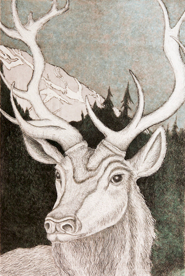 Roosevelt Elk by Tallmadge Doyle - Davidson Galleries