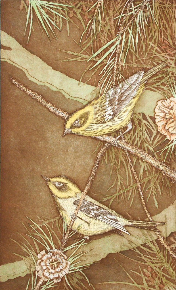 Townsend Warblers by Tallmadge Doyle - Davidson Galleries