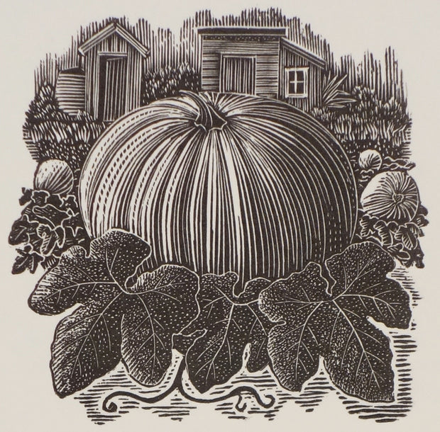 Pumpkin Patch by Andy English - Davidson Galleries