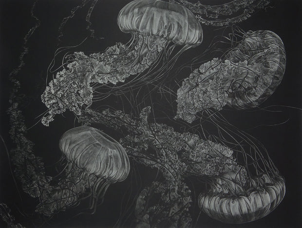 Jellyfish by Trevor Foster - Davidson Galleries