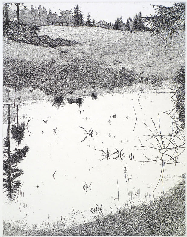 The Pond - May 1977 by Art Hansen - Davidson Galleries