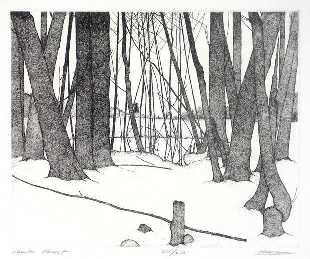 Winter Forest by Art Hansen - Davidson Galleries