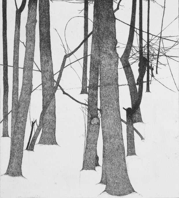 Winter, Forest, and the Wanderer by Art Hansen - Davidson Galleries