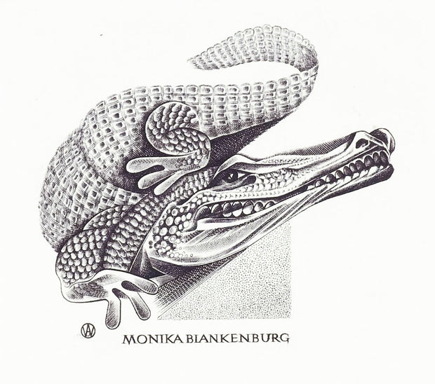 Coccodrillo for Monika Blankenburg by Wojciech Jakubowsky - Davidson Galleries