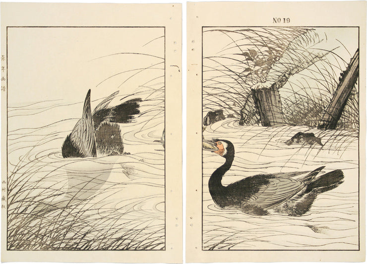 Large Clematis, Lalang Grass, Common Cormorant by Imao Keinen - Davidson Galleries