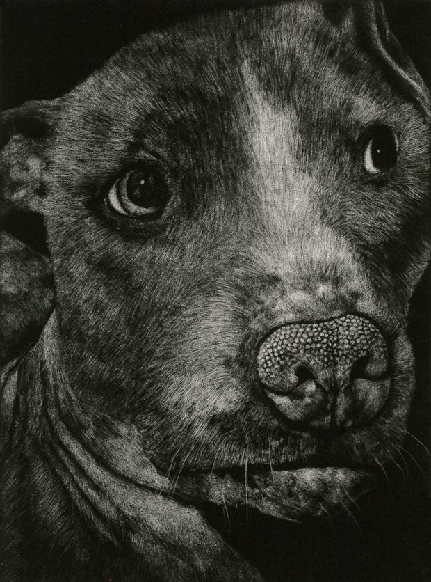 Otis II by Kirsten Flaherty - Davidson Galleries