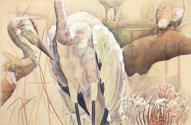 One White Crane by Peggy MacNamara - Davidson Galleries