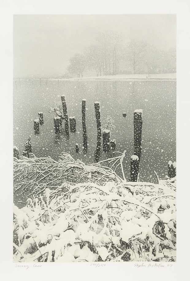 January Snow by Stephen McMillan - Davidson Galleries