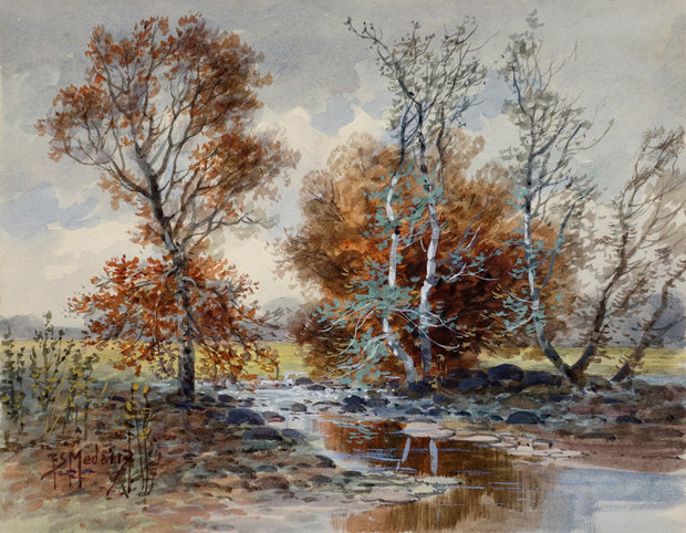 Birch Trees, by F. S. Medairy by F.S. Medairy - Davidson Galleries
