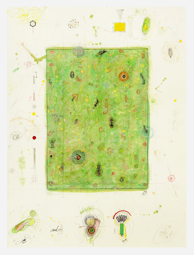 #309 Pathographic Field 1 by Mark Meyer - Davidson Galleries