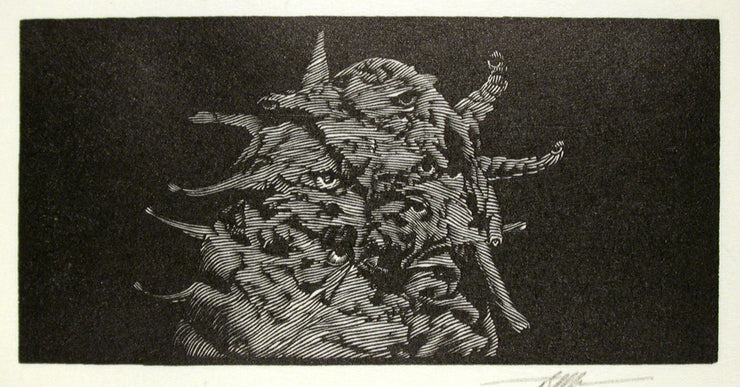 Argus from Bestiaire D'Amour by Barry Moser - Davidson Galleries