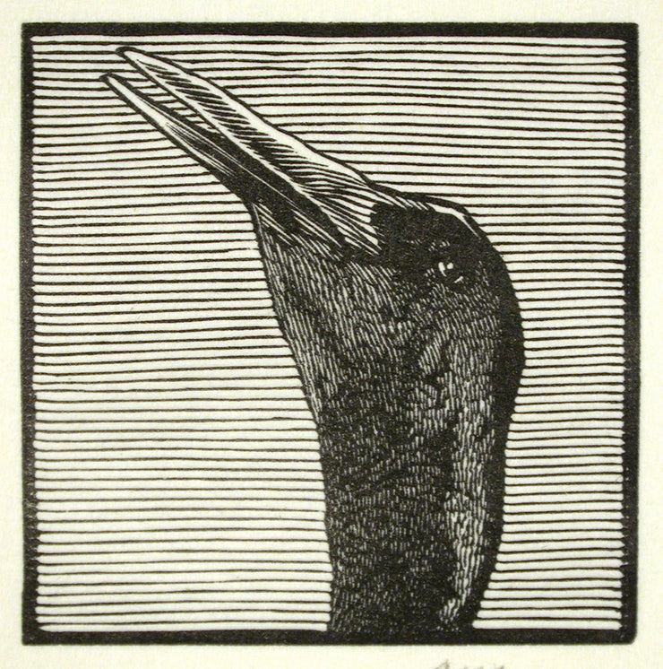 Crane from Bestiaire D'Amour by Barry Moser - Davidson Galleries